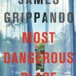 [PDF] [EPUB] Most Dangerous Place (Jack Swyteck, #13) Download