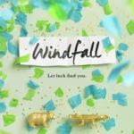 [PDF] [EPUB] Windfall Download