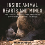[PDF] [EPUB] Inside Animal Hearts and Minds: Bears That Count, Goats That Surf, and Other True Stories of Animal Intelligence and Emotion Download