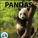 [PDF] [EPUB] My Favorite Animal: Pandas Download