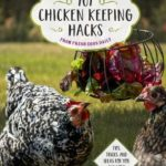 [PDF] [EPUB] 101 Chicken Keeping Hacks from Fresh Eggs Daily: Tips, Tricks, and Ideas for You and your Hens Download