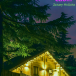[PDF] [EPUB] Indie Rock Cabin Download