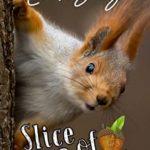[PDF] [EPUB] Slice of Summer (Nut House Series Book 3) Download