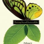 [PDF] [EPUB] Thriving Beyond Sustainability: Pathways to a Resilient Society Download