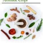 [PDF] [EPUB] Handbook of Medicinal and Aromatic Crops Download
