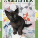 [PDF] [EPUB] A Quilt in Time Download