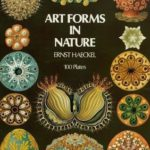 [PDF] [EPUB] Art Forms in Nature Download