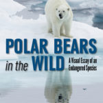 [PDF] [EPUB] Polar Bears in the Wild: A Visual Essay of an Endangered Species Download