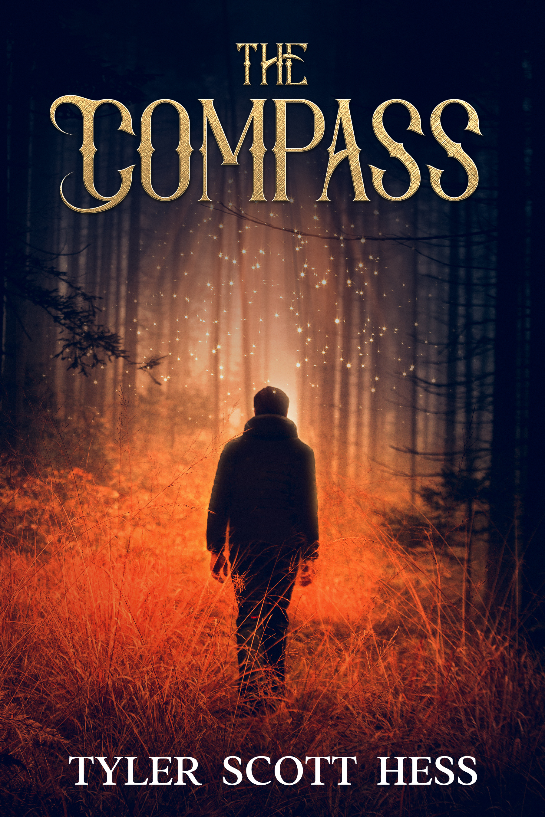 [PDF] [EPUB] The Compass (The Adventures of Niko Monroe, #2) Download by Tyler Scott Hess