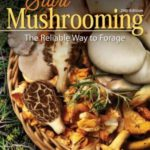 [PDF] [EPUB] Start Mushrooming: The Reliable Way to Forage Download