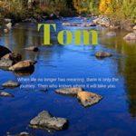 [PDF] [EPUB] Tom by Stephen Matthews Download