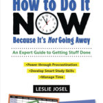 [PDF] [EPUB] How to Do It Now Because It's Not Going Away: An Expert Guide to Getting Stuff Done Download