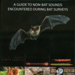 [PDF] [EPUB] Is That a Bat?: A Guide to Non-Bat Sounds Encountered During Bat Surveys Download