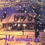 [PDF] [EPUB] Kerstnovelle, het wonder op Monroe Street Download