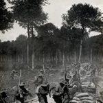 [PDF] [EPUB] World War One: Great War Download